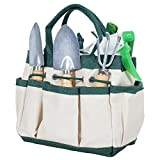 Pure Garden 50-132 Mini Repotting Kit and Carrying Tote Bag Organizer for Succulents, Herbs, and Bonsai Plants 7 Piece Gardening Tool Set