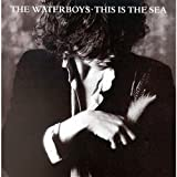 This Is The Sea by The Waterboys (1989-11-21)