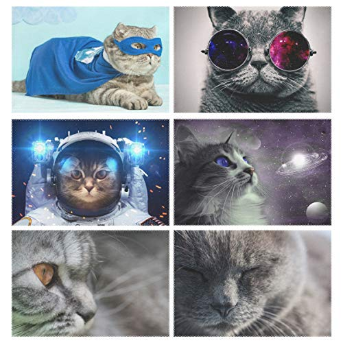 (ZZKKO Superhero Cat Funny Kitty 12x18 Inch Placemats for Kitchen Table Colorful Polyester Water Resistant Home Decor Plate Mat Set of 6,Multicolor)