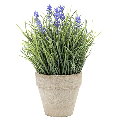 Small Artificial Green Creeping Lily Plant