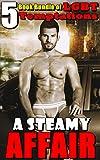 A Steamy Affair : (5 Book Bundle of LGBT Temptations)