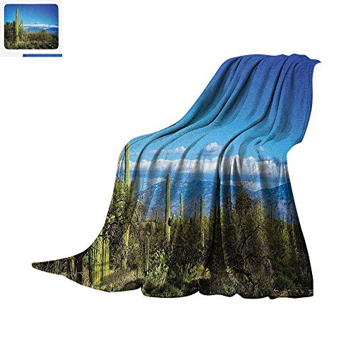 Desert Warm Microfiber All Season Blanket Wide View of The Tucson Countryside with Cacti Rural Wild Landscape Arizona Phoenix Summer Quilt Comforter 80