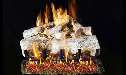 Real Fyre 30-inch Mountain Birch Vented Gas Logs Bundled with G45 Burner Kit (Natural Gas) by RealFyre