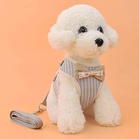 KXTHUT-Collar para mascotas Collar De Perro Ajustable Conjunto De ...