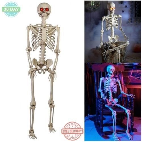 Price comparison product image Kosmo Supply Halloween Skeleton 5 Ft Outdoor Decoration Realistic LED Eyes Fully Assembled!!