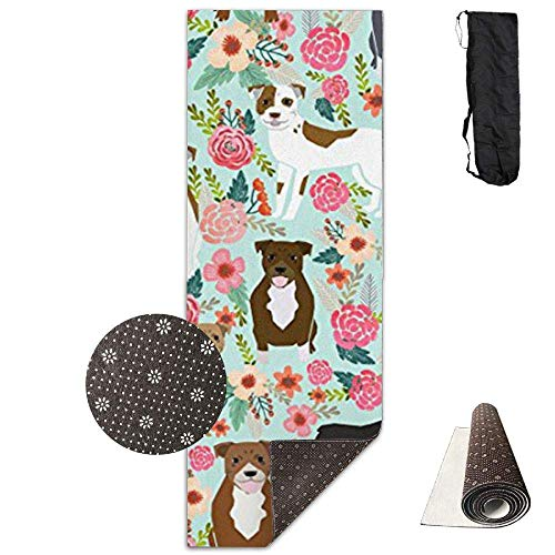 (Pitbull Terriers Cute Dogs and Optimal Cushioning,70