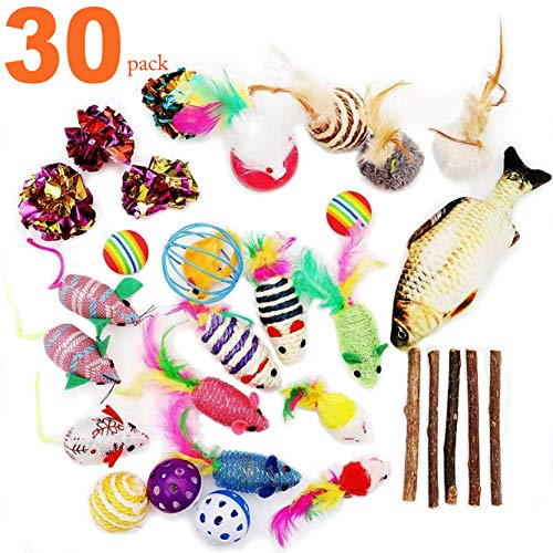 30Pcs Cat Toys Kitten Catnip Toys Assorted, Fish, Fluffy Mouse, Tumble Cage Mice, Crinkle Rainbow Balls Bells Toys for…
