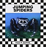 img - for Jumping Spider (Spiders) book / textbook / text book