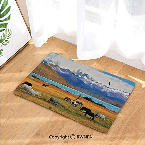Indoor Doormat Animal Farm with Horses in The Vast Combe with Mountains Desert Art Photo Absorbs Water Latex Backing Door Mat for Small Front Door Inside Mat Entrance Rug Carpet,Multicolor
