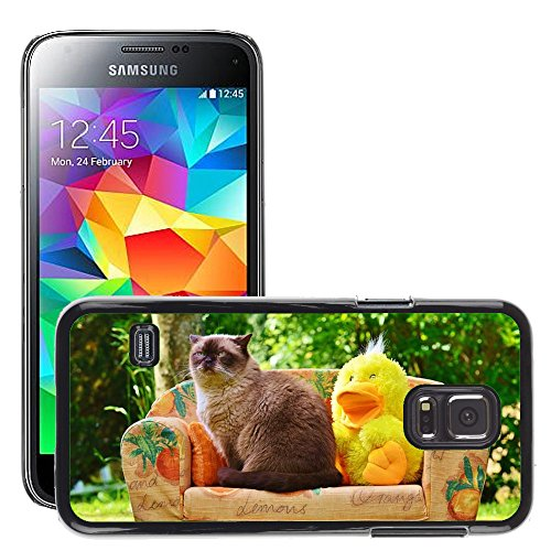 Hot Style Cell Phone PC Hard Case Cover // M00114788 Mieze Couch Sofa Duck Cat // Samsung Galaxy S5 MINI SM-G800