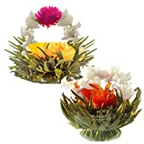 Jasmine Flowering Teas - Fairy Lily and Eternal Love Blooming Tea Flowers - Hand-Tied Flowering Tea Balls - Each Tea Blossom Can Be Used Multiple Times (2-Pack)