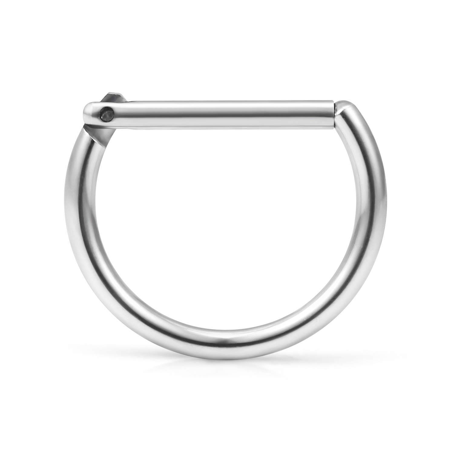 Ruifan 316L Stainless Steel D Shaped Hinged Seamless Segment Hoop Septum Clicker Ring Lip Helix Tragus Cartilage Earrings Nose Rings Pirecing 16g 10mm BH00658