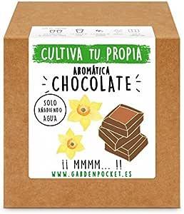 Garden Pocket - Kit Cultivo AROMÁTICA Chocolate: Amazon.es: Jardín