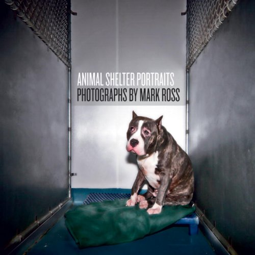 Animal Shelter Portraits pdf