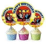 Crafting Mania LLC. 12 Happy Birthday Ninjago Inspired Party Picks, Cupcake Picks, Cupcake Toppers #1