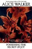 Possessing the Secret of Joy, Alice Walker, 0671789457