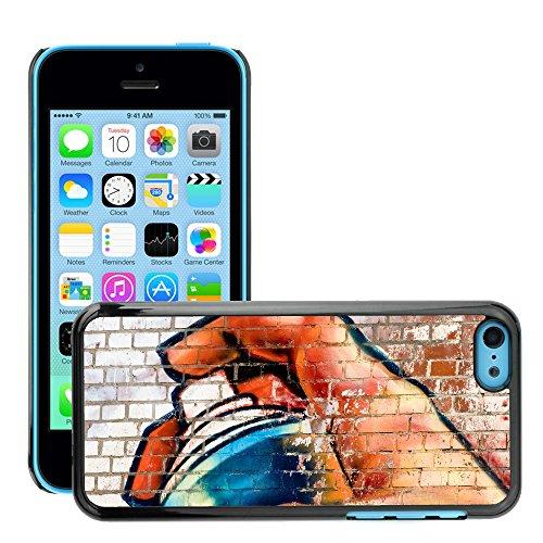 Premio Sottile Slim Cassa Custodia Case Cover Shell // V00002370 Graffiti // Apple iPhone 5C
