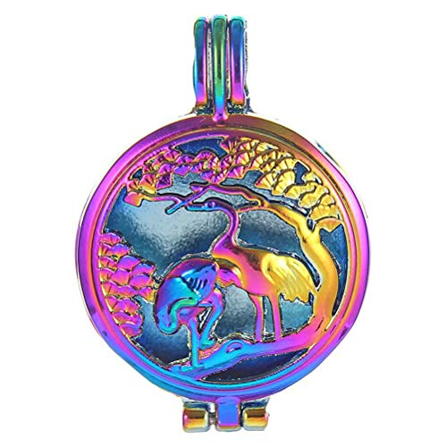 HENGSHENG 10 Pieces Aromatherapy Essential Oil Diffuser Red-Crowned Cranes Charm Rainbow Color Hollow Filigree Pendant Locket for Jewelry Making