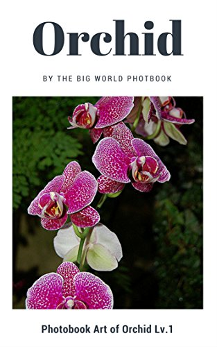 Orchids by The Big World Photobook : Beautiful orchids, Orchids Photographs , Pictures of Orchids ,Orchids Artistic inspiration, Reference Photos for Artists,Orchid ... Flower, (Photobook Art of Orchids 1) (Photograph Orchid)