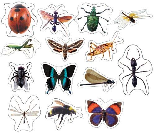 - Carson Dellosa Insects: Photographic Shape Stickers (168014)