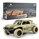 Gizmovine Remote Control Cars 4WD 1: 18 Scale Large Size High Speed 15.5 MPH+ Racing Rc Cars Off Road for Kids and Adults , 2019 Version (Khaki)