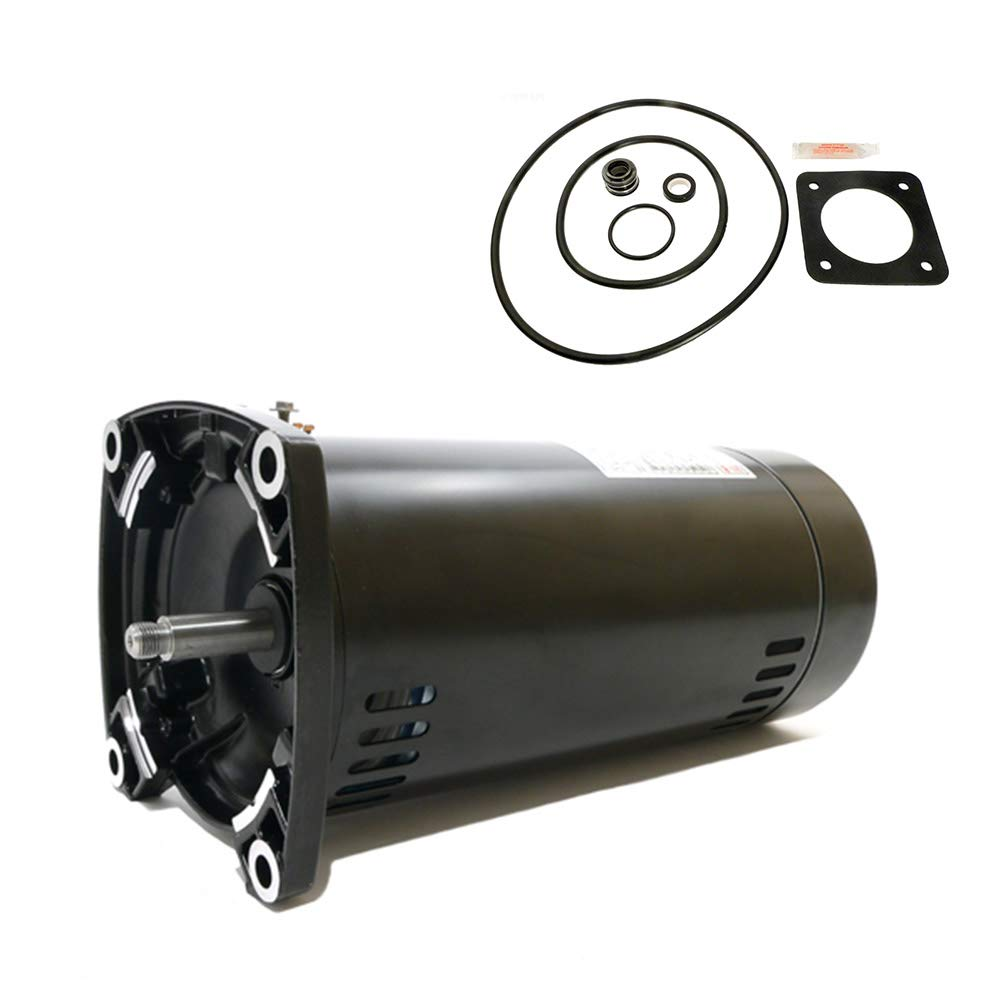 Puri Tech Replacement Motor Kit for Sta-Rite Dura-Glas 1HP P2RA5E-181L AO Smith USQ1102 w/GO-KIT-6