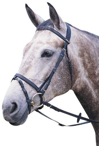 Wintec Flash Bridle Without Reins