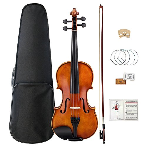 Violin 4/4, Violin Set Ebony Fitted with Hard Case, Rosin, Shoulder Rest, Ebony Fingerboard and Pegs, Mugig Fiddle with Replacement Strings (Full Size) by Mugig