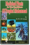 Medicinal Plants in the Traditions of Prophet Muhammad with colour images - A Scientific study of Prophetic Medicine, Food & Perfume