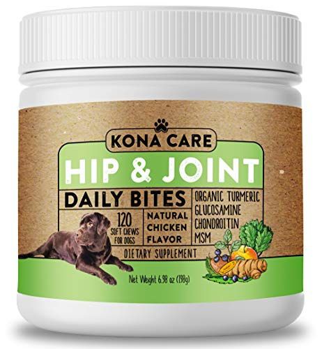 Hip & Joint Supplement for Dogs - Organic Turmeric, Glucosamine, Chondroitin, MSM - Made with All-Natural Ingredients - Supports Healthy Joints & Improves Mobility, Large & Small Dogs - 120 Soft Chews ()