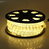 Katop Flexible 150' LED Crystal Clear PVC Tubing Rope Light Indoor/outdoor Boat Decorative Party Christmas Holiday Business Restaurant Light Kit 110v/60hz Customizable Length (Warm White)