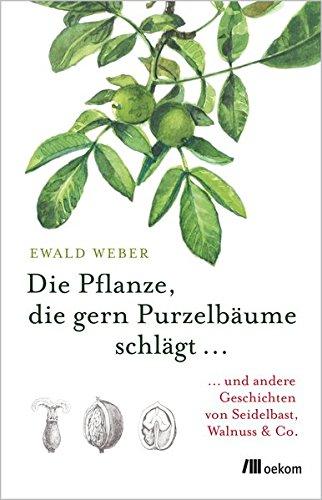 Die Pflanze, die gern Purzelbäume schlägt …: …und andere Geschichten von Seidelbast, Walnuss & Co. Gebundenes Buch – 26. Februar 2018 Ewald Weber oekom verlag 3960060289 170173