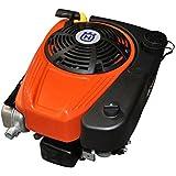Motor Briggs Stratton 344 CC salida 25, 4 x 80 mm con motor ...