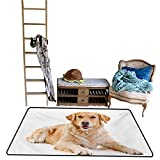 Indoor Floor mat,Young Pedigree Puppy Laying Over White Background Sweet Baby Dog 55''x79'',Can be Used for Floor Decoration