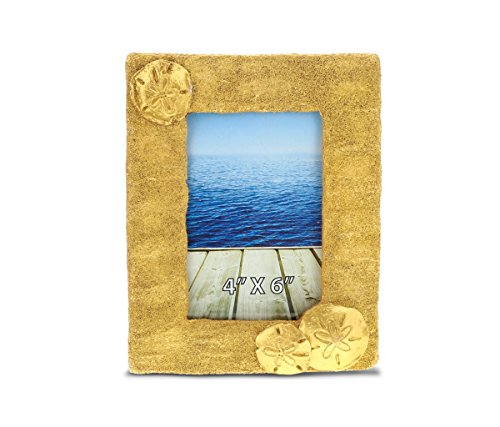 Pictures Sand Dollars - CoTa Global Metallic Gold Sand Dollar and Sea Biscuits Resin Photo Frame - Classy Golden Picture Holder with Cute Aquatic Ocean 4 x 6 Inch Vibrant Handpainted Wall Display Gift - Nautical Decor