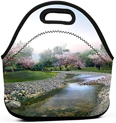 For Teens Student/School Picnic Camping/Office/Picnic Travel Bag/Picnic Travel Outdoor/Picnic Camping Fashion Graphic Adjustable Cooler Bag