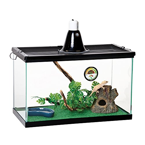 Zilla Reptile Starter Kit 10 with Light and Heat, Tropical - Glass Reptile Terrarium