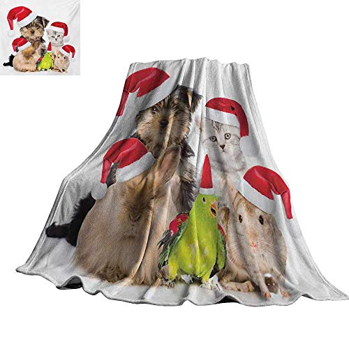 (Angoueleven Christmas,Throw Blankets Xmas Crew Cat Dog Bird Mouse and Rabbit Bunny with Santa Hats Grumpy Pets Picture for Couch Bed Living Room 70