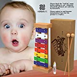 Wooden Xylophone for Kids: Set of Perfectly Sized Glockenspiel Musical Toy for Kids - with Clear Sounding Metal Keys, Two Child-Safe Wood Mallets Sticks and a Free Eagle Whistle for Music-Making Fun