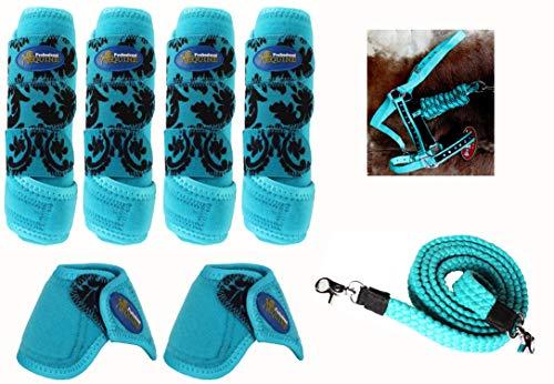 Professional Equine Horse Medium Sports Medicine Boot Combo w/Reins and Halter 4131F (Sports Medicine Combo Boot)