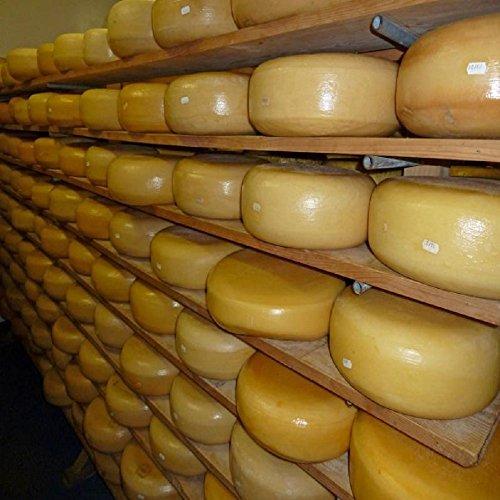 Farmhouse Artisan Aged Dutch Cheese