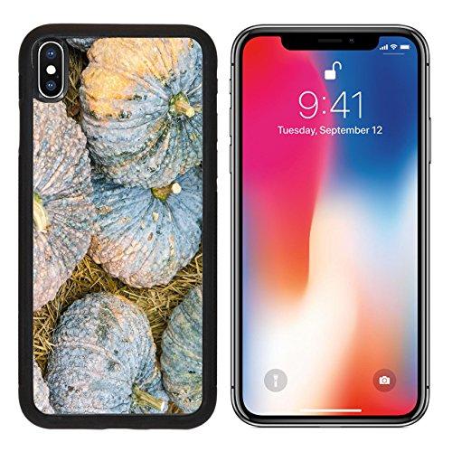 MSD Premium Apple iPhone X Aluminum Backplate Bumper Snap Case IMAGE ID: 27957971 Beautiful pumpkin display on a (Pumpkin Carving Contests)