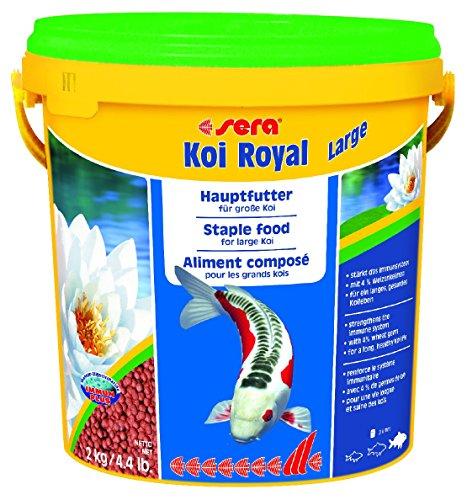 Sera mangime per pesci koi royal large kg 2 accessori for Accessori per laghetti