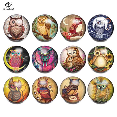 12pcs/lot 18mm Ginger Snap Button Vintage Styles Multi Pattern Glass Snap Charms For 20mm Snap Bracelet DIY Snap Jewelry (Owl)