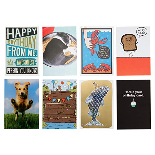 Hallmark Shoebox Funny Birthday Card Assortment (8 Cards with Envelopes)