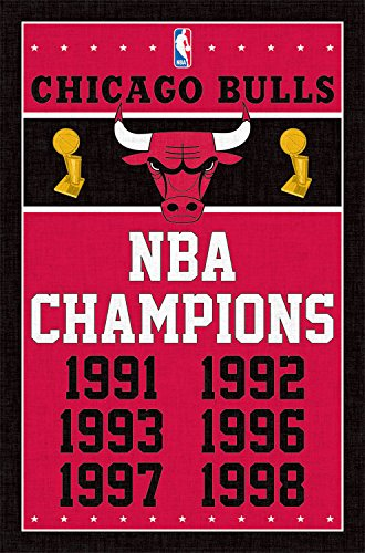 Poster Team Chicago Bulls - Trends International Chicago Bulls Champions Wall Poster 22.375