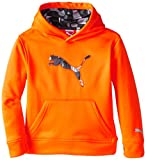 PUMA Boys' Big Cat Hoodie (Little Kid/Big Kid)