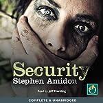 Security | Stephen Amidon