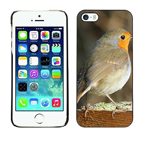 Premio Sottile Slim Cassa Custodia Case Cover Shell // F00004930 oiseau // Apple iPhone 5 5S 5G