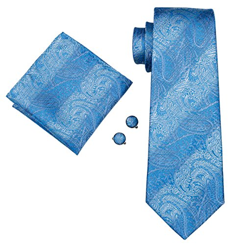 Hi-Tie New Classic Blue Paisley Necktie Set in Box,Blue,One (New Mens Paisley Light)